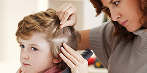 Back to school can also mean back to head lice!